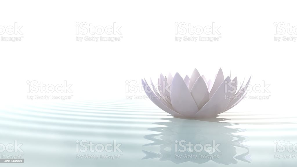 Zen lotus on water stock photo