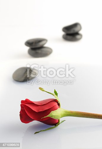 155139080istockphoto zen rose 471099525