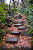 Tranquil scene zen-like with stone path in a beautiful park in Japan