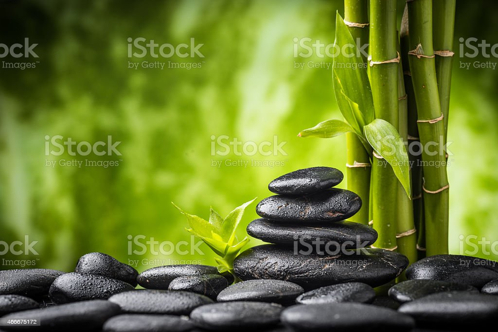 A zen-like background with bamboo and black rocks stock photo