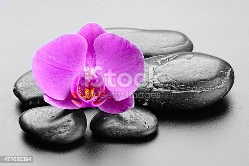 zen stones , bamboo and orchid.Others spa teme in this lightbox http://www.istockphoto.com/file_search.php?action=file&lightboxID=7989999