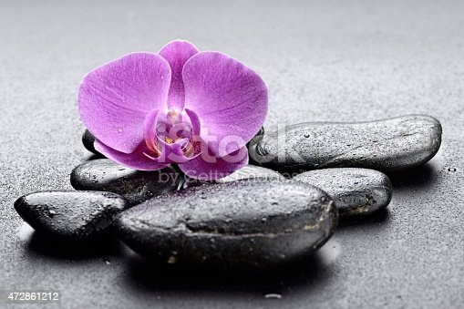 zen stones  and orchid.Others spa teme in this lightbox http://www.istockphoto.com/file_search.php?action=file&lightboxID=7989999