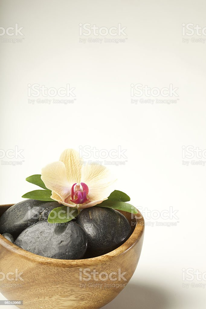 Zen-like scene with flower royalty-free stock photo