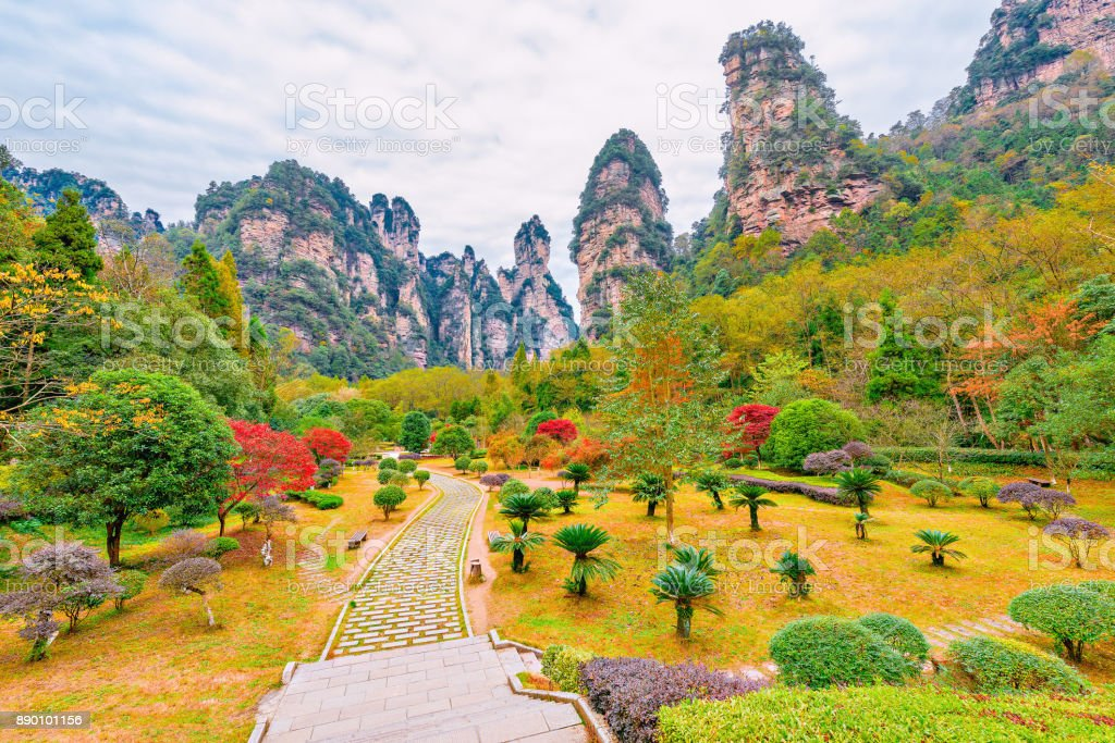 Zhangjiajie Forest Park. stock photo