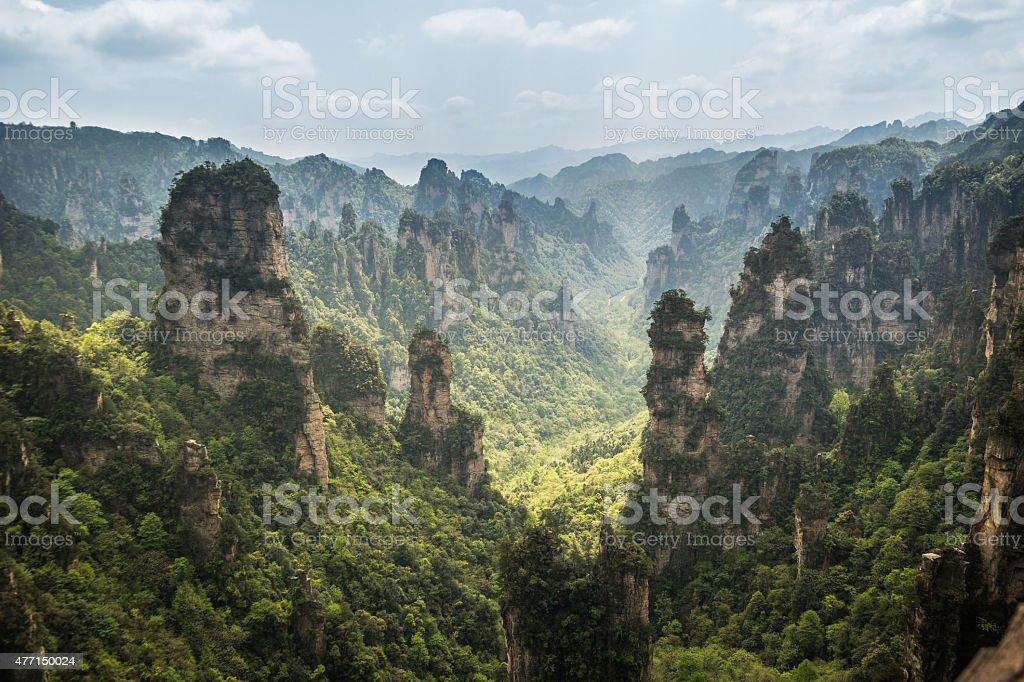 Zhangjiajie mountains stock photo