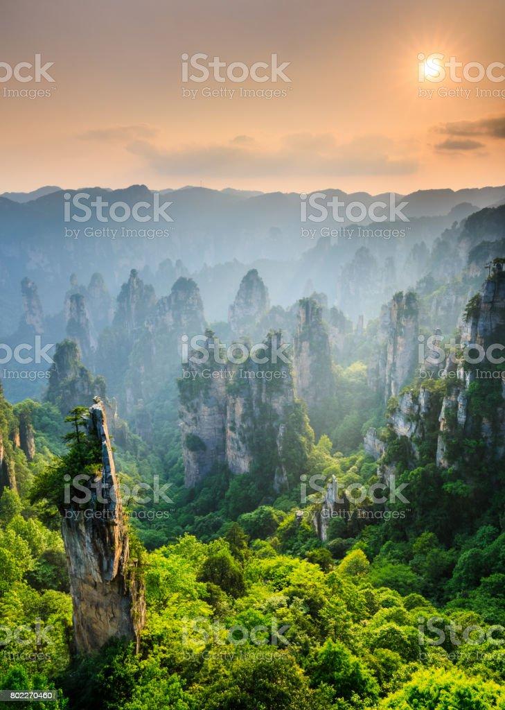 Zhangjiajie National forest park at sunset, Wulingyuan, Hunan, China stock photo