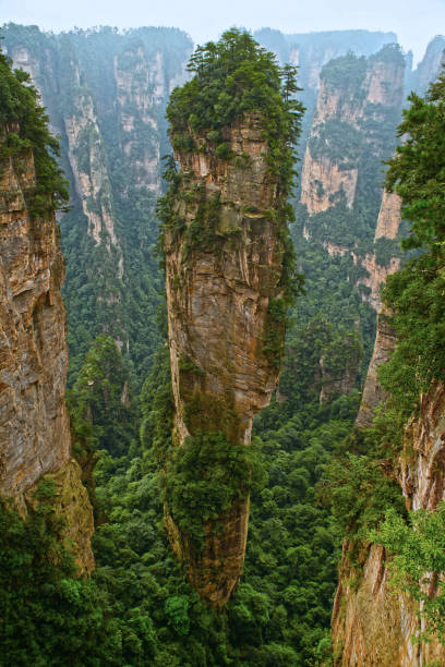 zhangjiajie national forest park, wulingyuan, provinz hunan, china - schönste reiseziele der welt stock-fotos und bilder