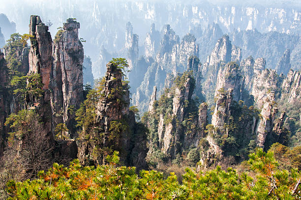 Zhangjiajie national geological Forest Park Zhangjiajie national geological Forest Park national forest stock pictures, royalty-free photos & images