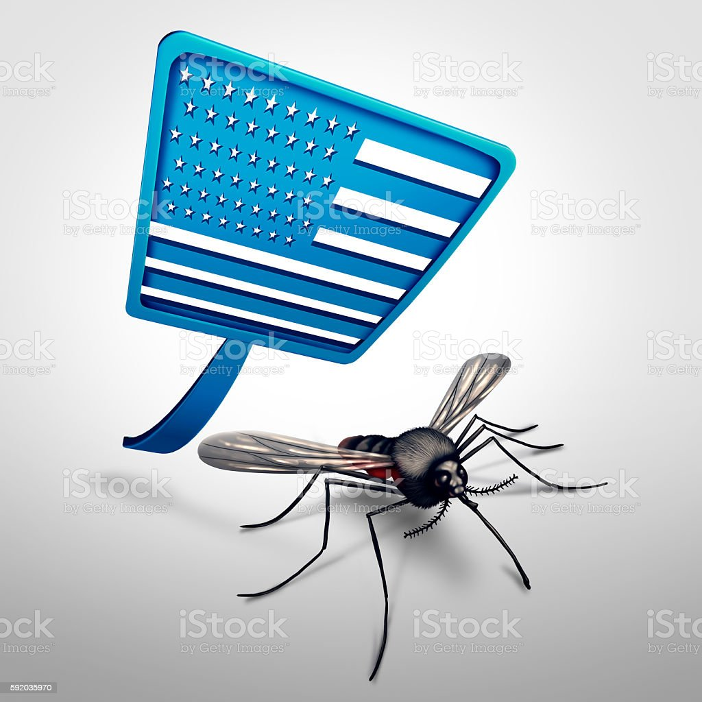 Zika in the United States stock photo