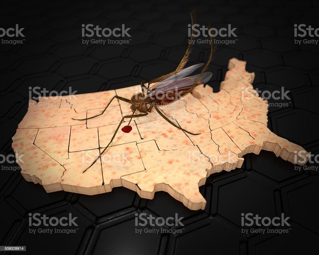 Zika Virus de la infecta los Estados Unidos - foto de stock