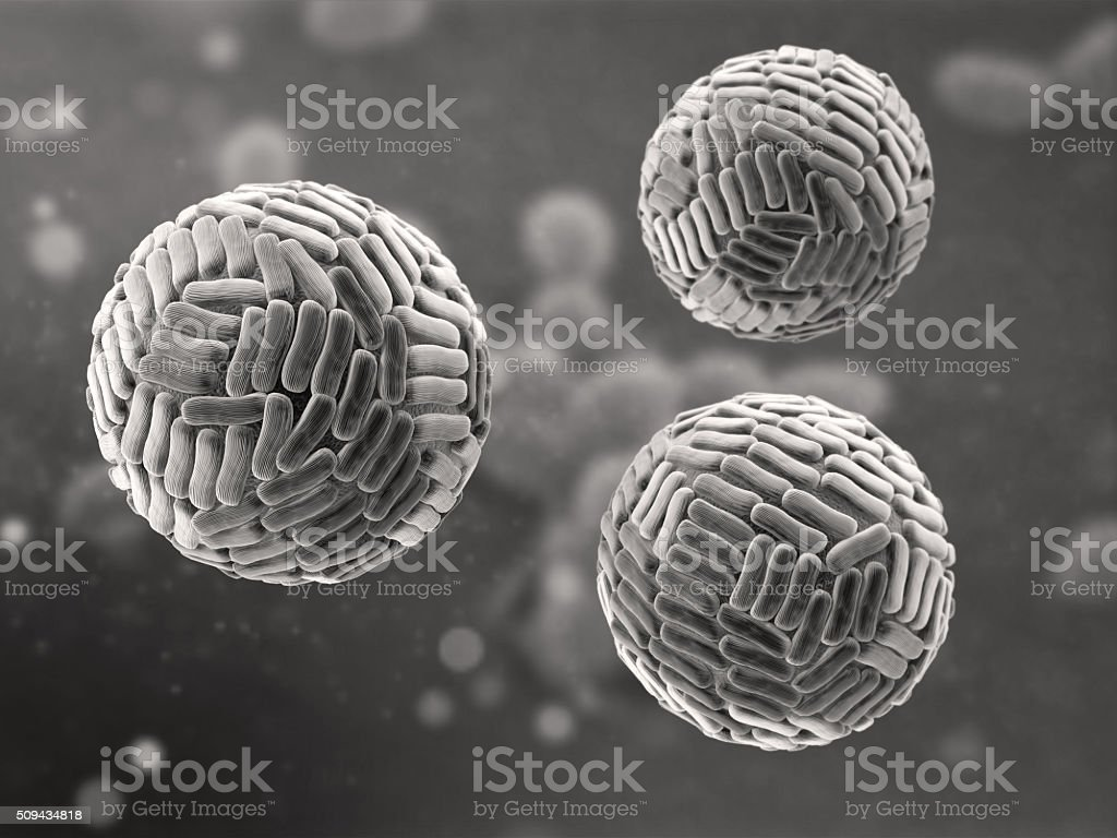 Zika Virus stock photo
