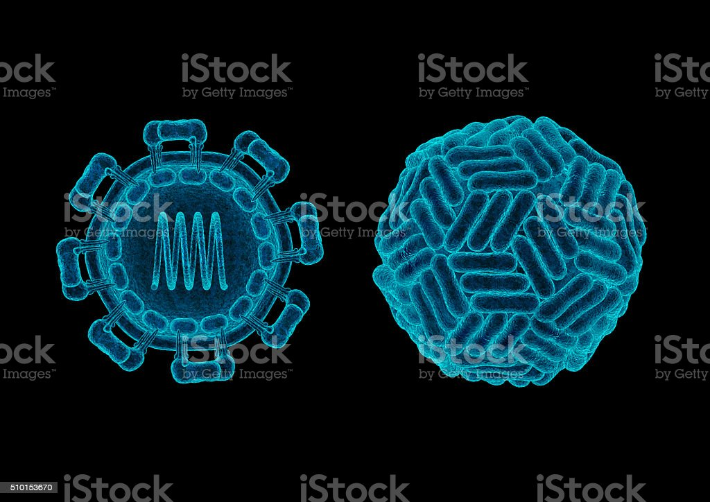 Zika virus structure concept stock photo