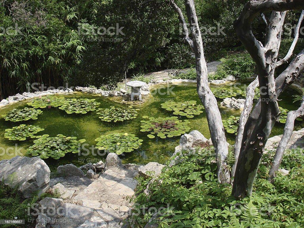 Zilker Botanical Gardens Ii Austin Stock Photo Download Image