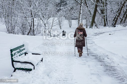 Lodz, Poland - February 4, 2019: An elderly lady is practicing Nordic walking in the park. Adam Mickiewicz in Łódź in Poland.
