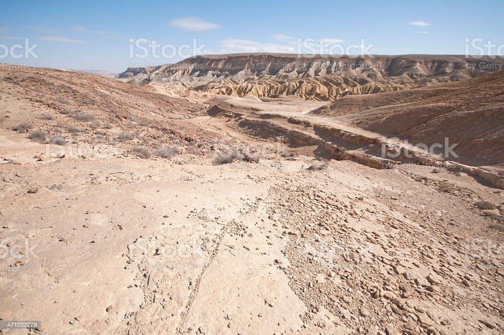 Zin valley, Negev, Israel royalty-free stock photo