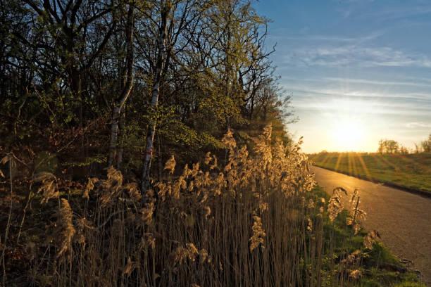 Zingst Sonnenuntergang – Foto