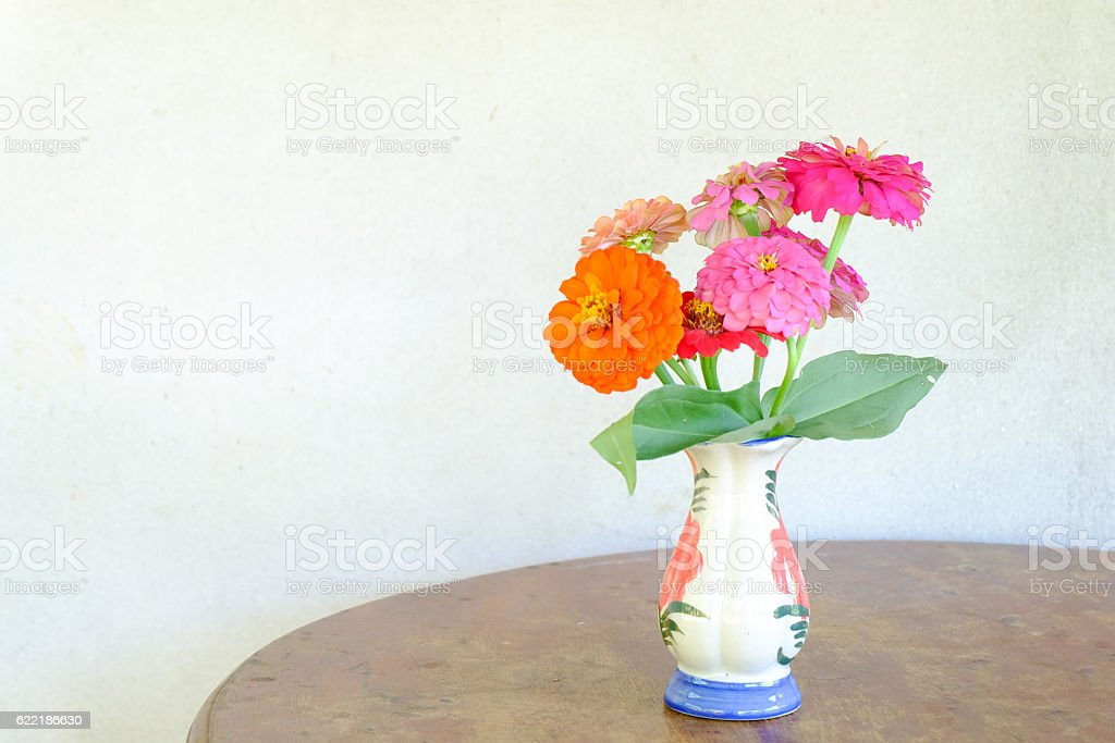 Zinnia Flower In A Vase Stock Photo Download Image Now Istock
