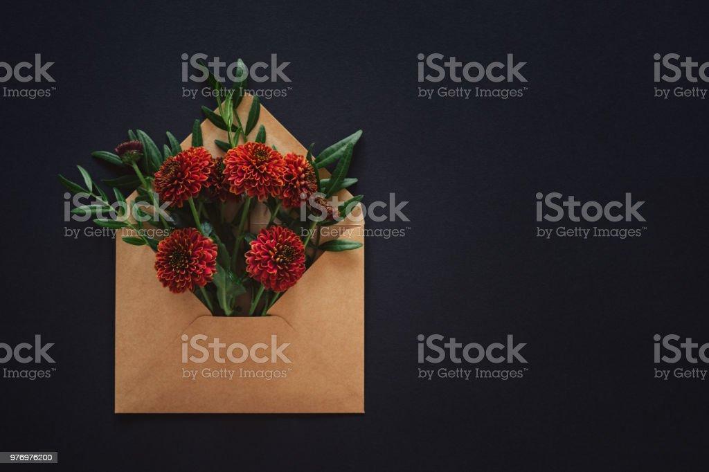 Zinnie Blumen in Umschlag – Foto
