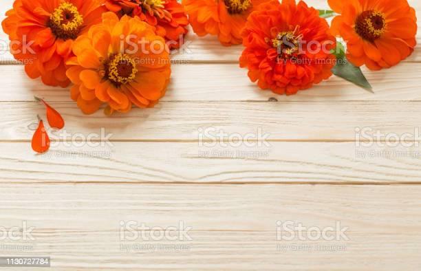 Zinnia on wooden background picture id1130727784?b=1&k=6&m=1130727784&s=612x612&h=qabdzxiozf6gwsb7wxwd2 aik3ir2otwfi  2fhkpzg=