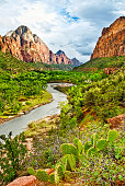 beautiful of narrow in the afternoon  in Zion National park,Utah,usa.