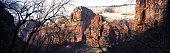 Zion Canyon National Park Panoramic