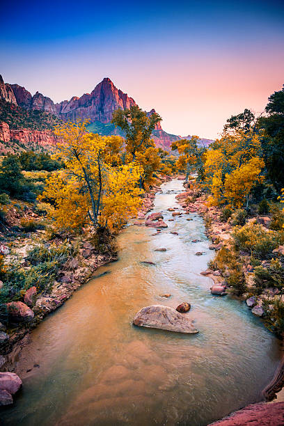 Zion Canyon The Virgin River flowing through Zion Canyon with the peak of The Watchman mountain as a backdrop in Zion National Park, Utah, at dusk. zion national park stock pictures, royalty-free photos & images