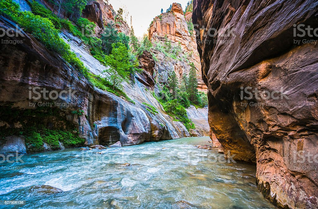 zion narrow  with  vergin river in Zion np Utah,usa. stock photo