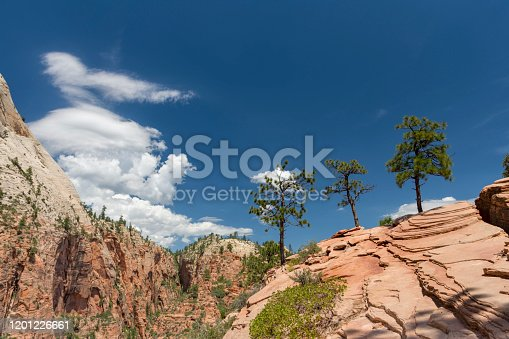 A view from the angels landing trail in Zion National Park