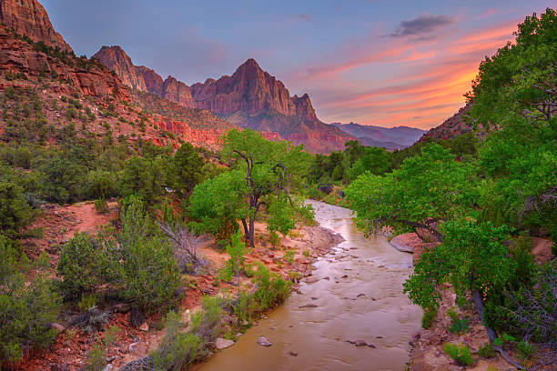 Zion National Park at sunset Virgin River at sunset zion national park stock pictures, royalty-free photos & images