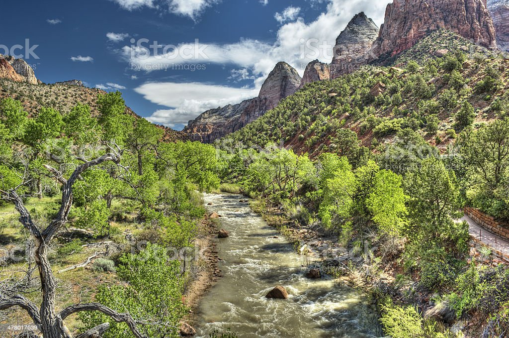 Zion National Park in HDR stock photo