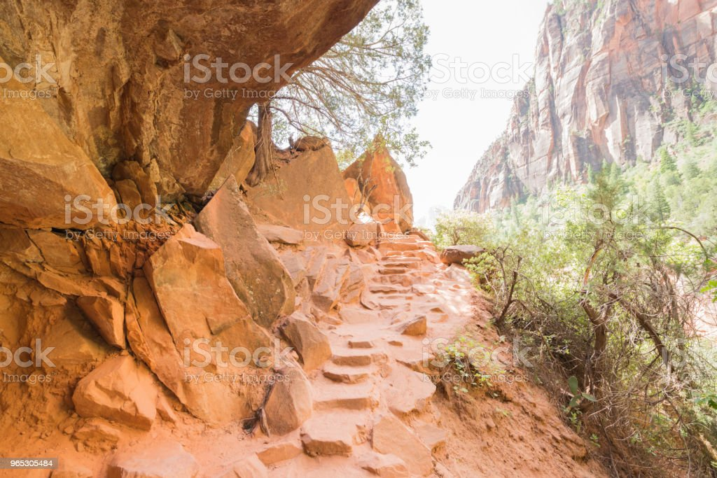 Zion National Park Mountain Hiking Trail in Utah Spring royalty-free stock photo