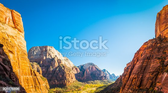 Warm, late afternoon sunlight illuminating the iconic pyramids of Zion National Park, Utah, with the mighty edifice of the Great White Throne (6744ft) overlooking the vibrant fall colors of the Cottonwood trees along the Virgin River canyon in this idyllic natural landscape, Southwest USA.
