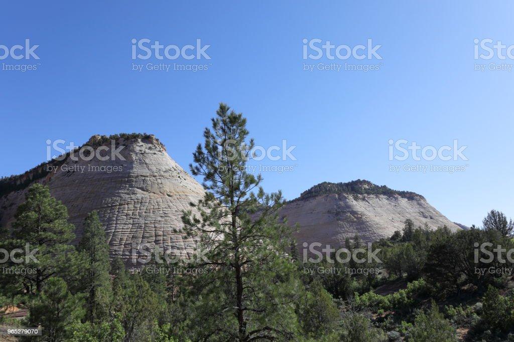 Zion National Park - Zbiór zdjęć royalty-free (Bez ludzi)