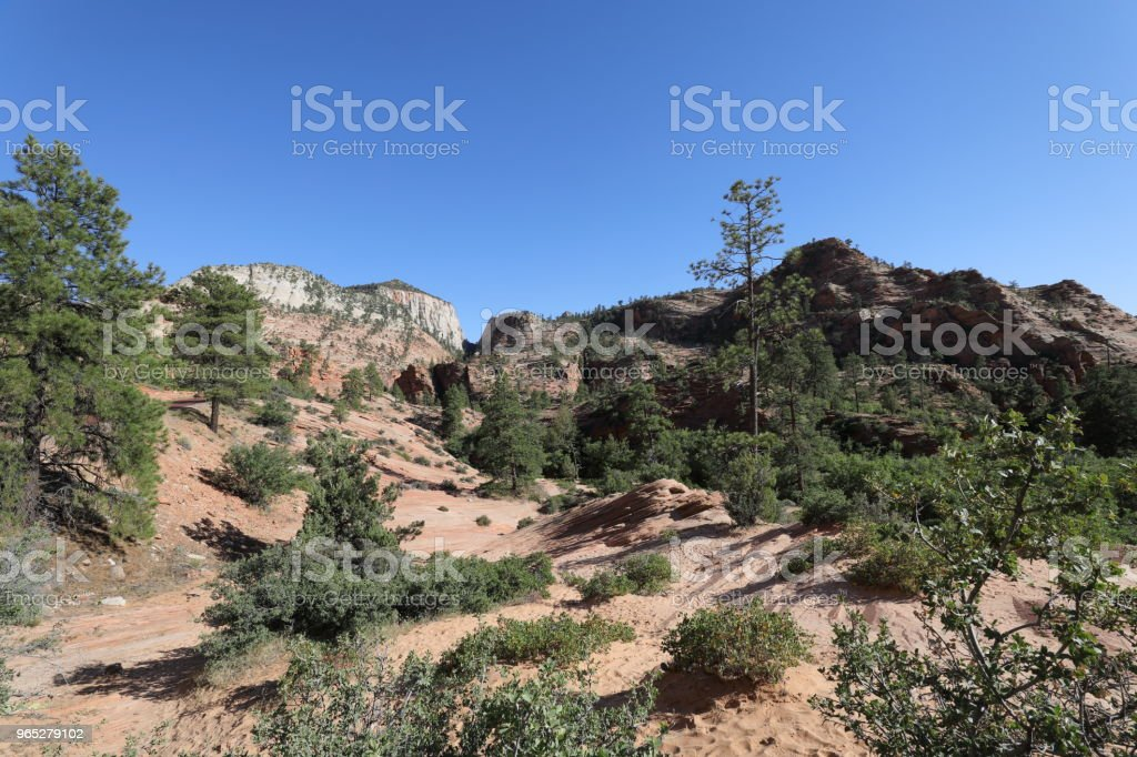 Zion National Park zbiór zdjęć royalty-free