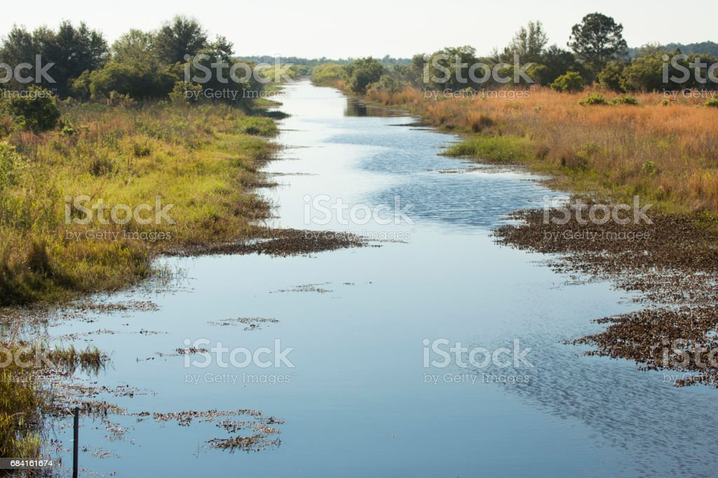 Zipprer Canal at Lake Kissimmee State Park, Florida. foto stock royalty-free