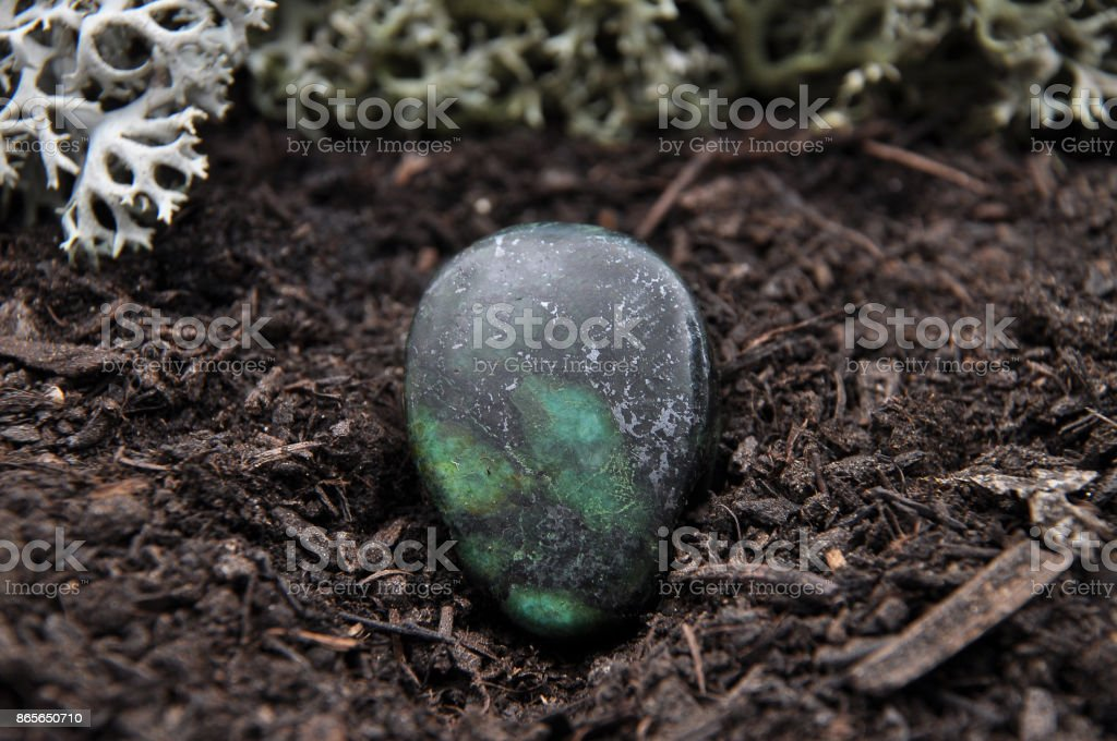 Zoisite on forest floor stock photo