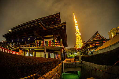 Zojoji Temple and Tokyo Tower night view