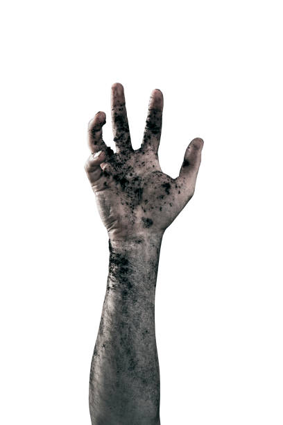 Zombie hand dirty with soil isolated on white background stock photo