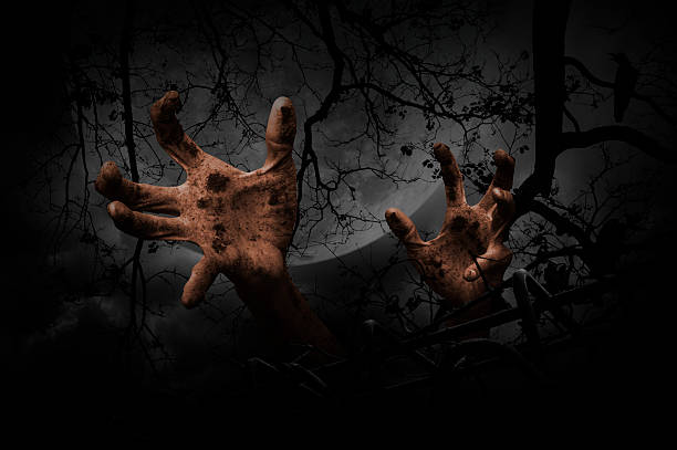 zombie hand rising out from old fence, halloween concept - plants of zombies stock-fotos und bilder