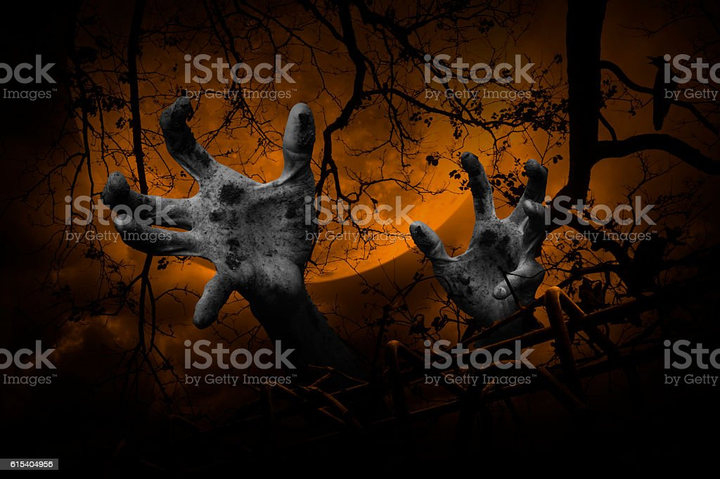 Zombie hand rising out from old fence over dead tree stock photo