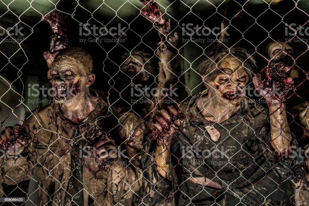 Zombies hinter einem Zaun – Foto