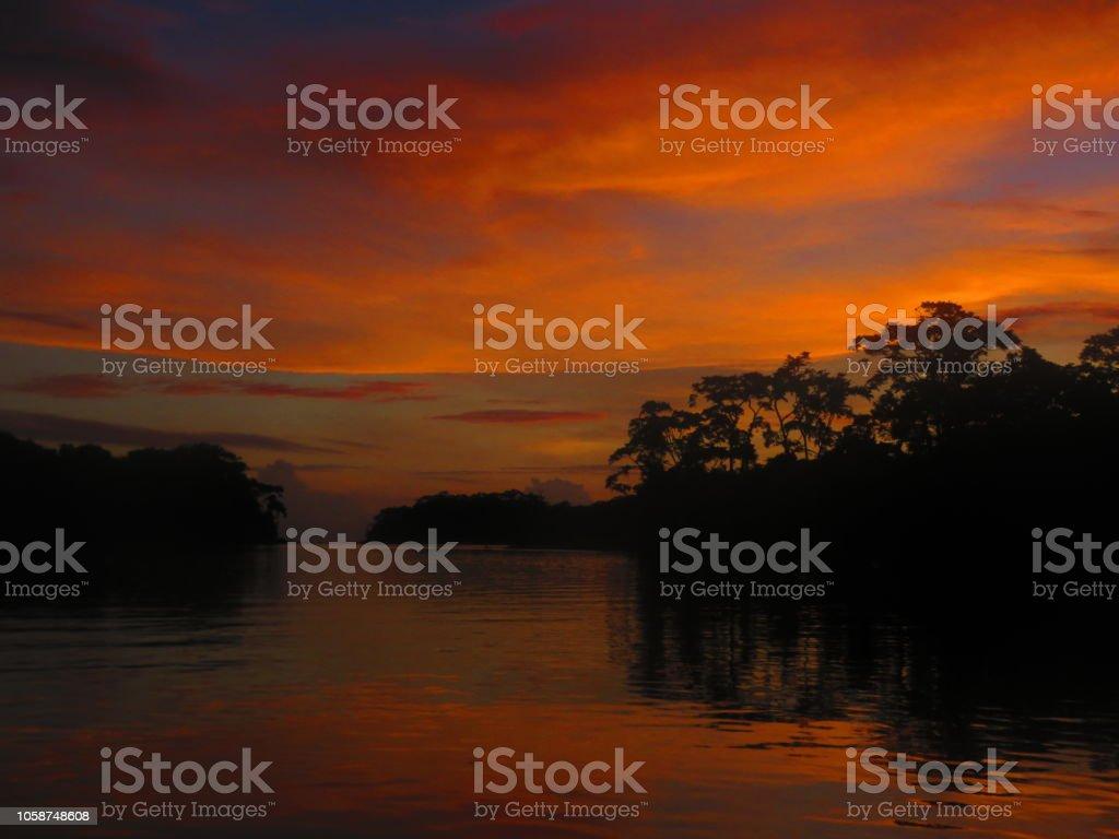 Zonsopgang En Regenwoud Tropisch Foto De Stock Y Más Banco