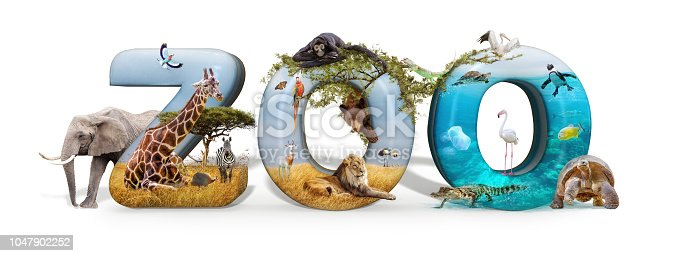 istock Zoo 3D Word and Animal Composite 1047902252