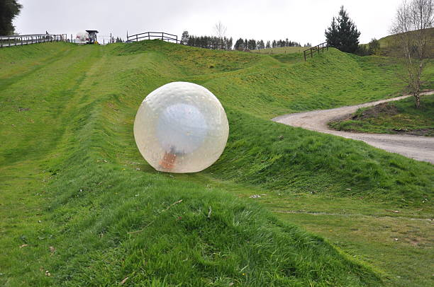 zorbing in New Zealand stock photo