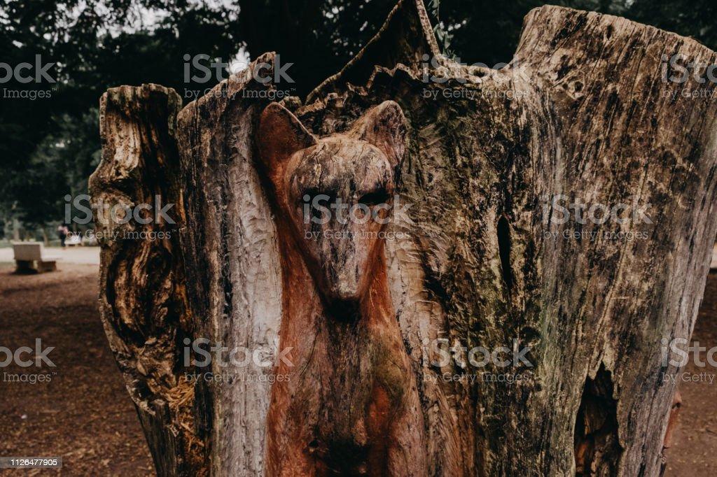Zorro en madera - foto de stock