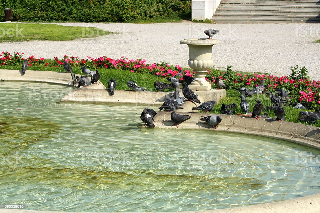Zrinjevac Park royalty-free stock photo