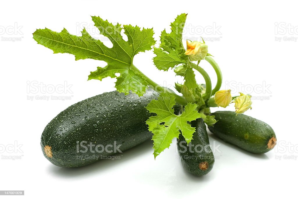 Zucchini bunch royalty-free stock photo