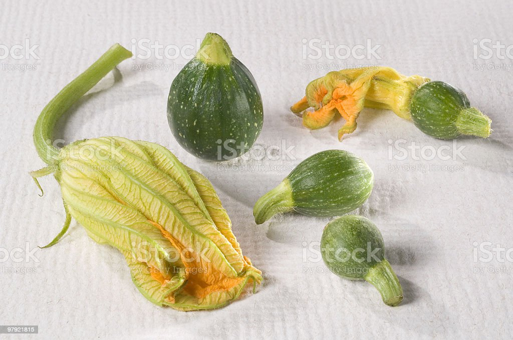 Zucchini Flower Group royalty-free stock photo