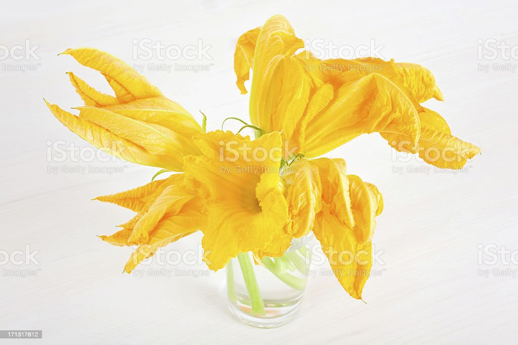 Zucchini Flowers royalty-free stock photo