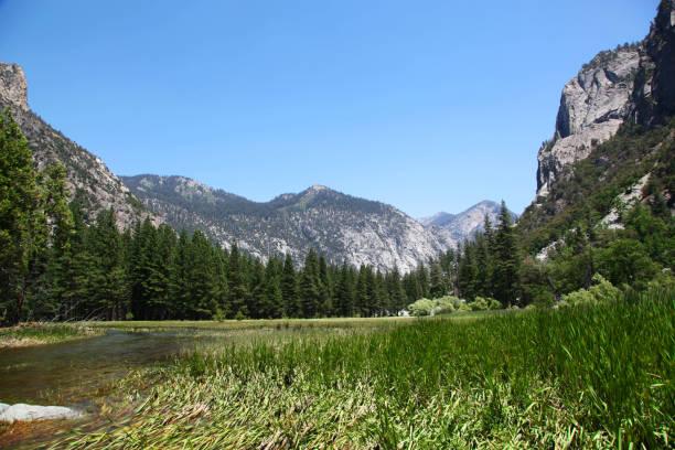 Zumwalt Meadow in Kings Canyon National Park stock photo